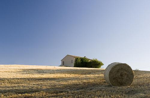 Il compendio perfetto per i contratti di affitto agrario for Contratti d affitto