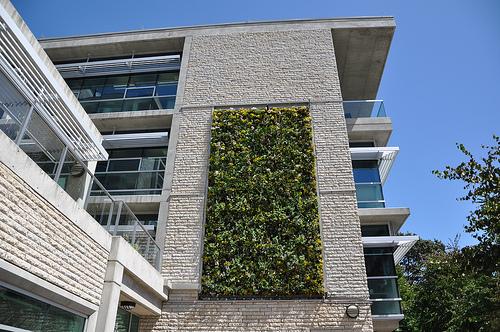 come realizzare un giardino verticale