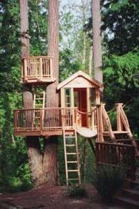 Come costruire una casa sull 39 albero - Costruire casa in economia ...