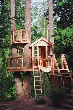 Come costruire una casa sull 39 albero - Casa sull albero progetto ...