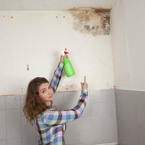 Muffa in casa rimozione a carico dell 39 inquilino o del - Muffa e umidita in casa ...