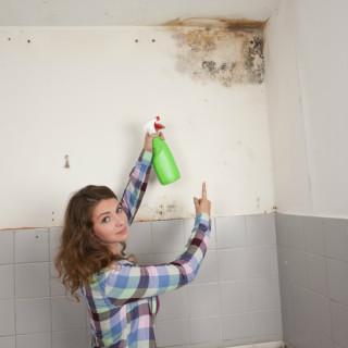 Muffa in casa? Rimozione a carico dell'inquilino o del proprietario?