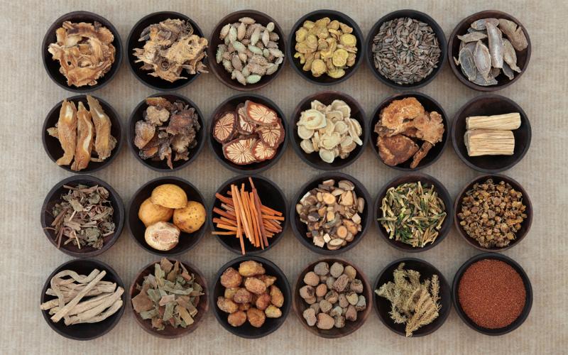 Piante Medicinali Da Coltivare : Piante medicinali da coltivare in inverno