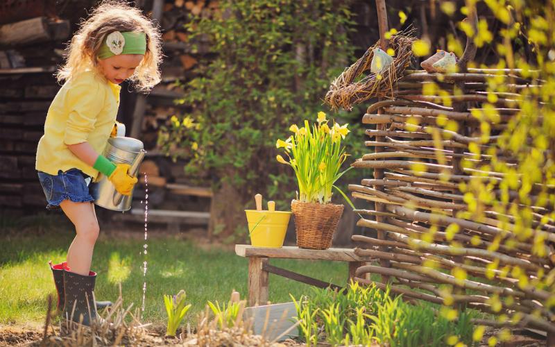 L'e-gardening: la cura ecologica del giardino
