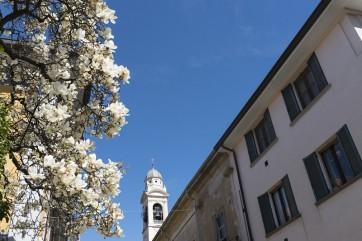 Varese e provincia: contributi per pagare l'affitto