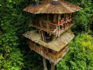 Abitare sulla cima di un albero, una casa ecosostenibile
