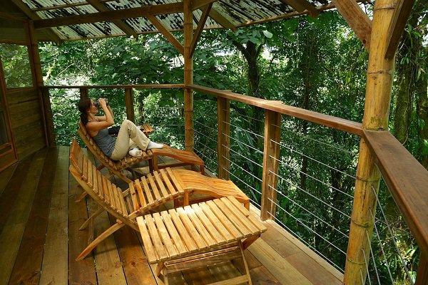 Abitare sulla cima di un albero una casa ecosostenibile for Costruire la casa dei miei sogni online