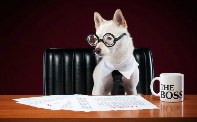 Chi, Come e Quando si registra il contratto d'affitto