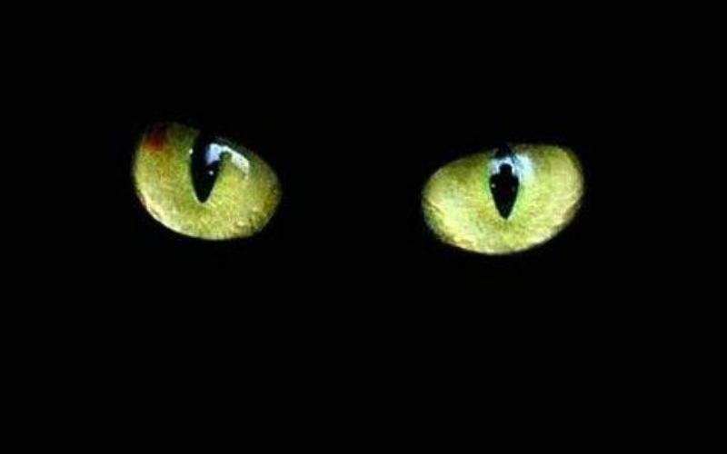 Credenze popolari sulla casa da tutto il mondo: siete superstiziosi?