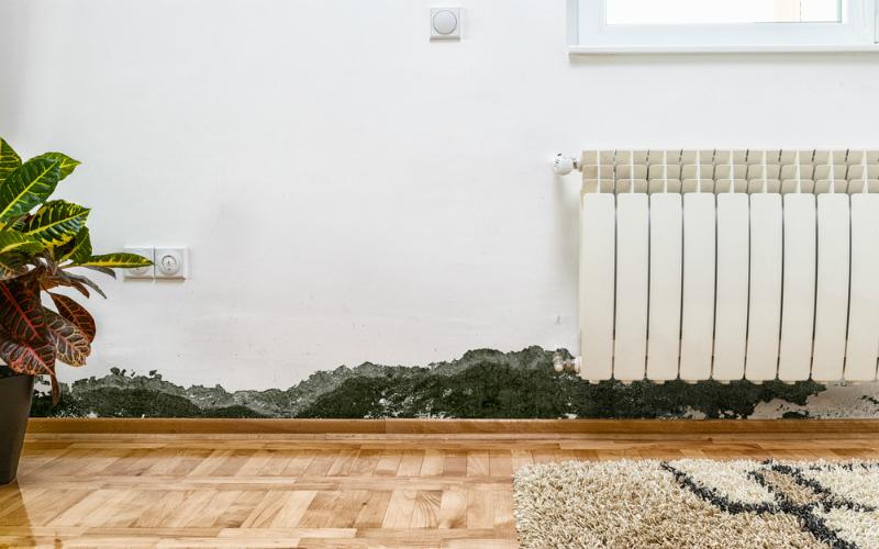 È possibile smettere di pagare l'affitto se la casa è umida?