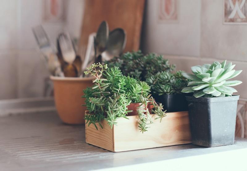 Cinque consigli per attrarre energia positiva in casa tua