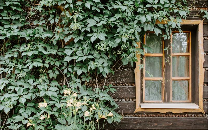 Una casa green che fa risparmiare in bolletta.
